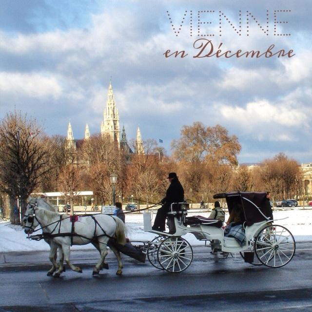 Vienne en décembre